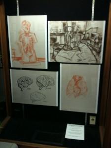 Drawings Display 2011