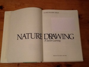 Nature drawing inside title