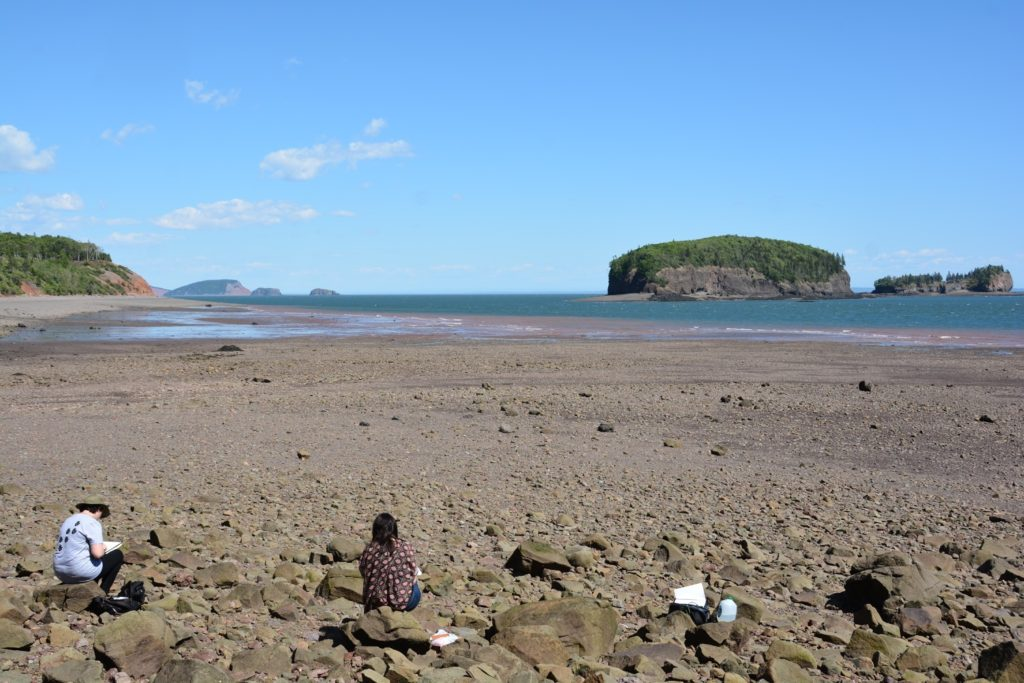 Bay of Fundy Coastal Drawing Excursion